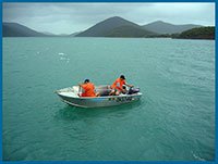 great barrier reef fishing charters