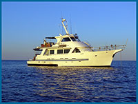 peral bay charters
