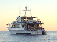 Great Barrier Reef Fishing